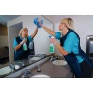 Уборка помещений: интерьера, стеклянных  и зеркальных поверхностей (5)